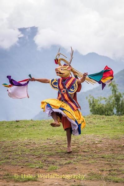 Brokpa Dancer - 8