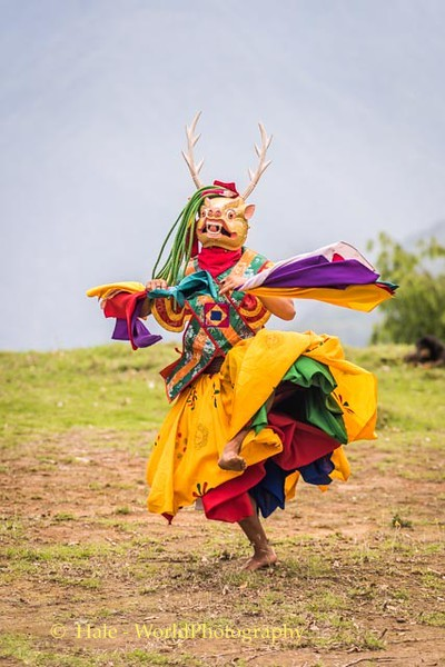 Brokpa Dancer - 14
