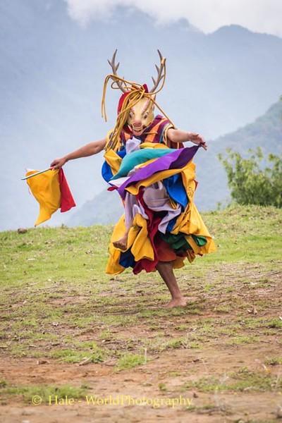 Brokpa Dancer - 11