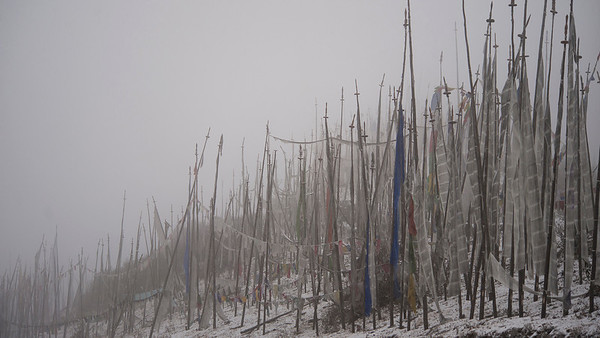 Prayer flags, Chele La, Bhutan