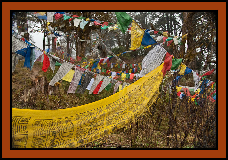 Dochu-La pass (10,300 feet).  Adorned with countless prayer flags and a series of 108 chortens (solid earthen devotional mounds, often containing sacred relics).