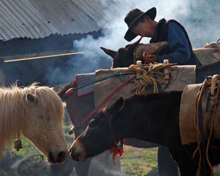 Horse Wrangler. Jhomolhari Trail