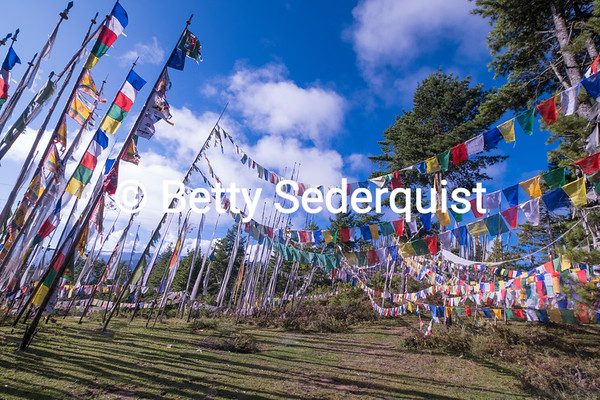 Prayer Flags and Memorial Poles near Bumthang