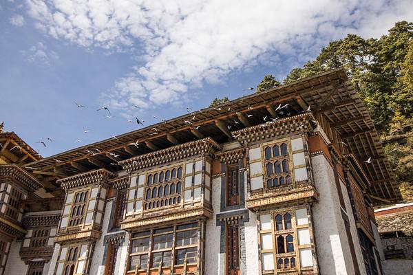 Bhutan (273)