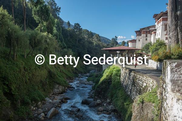 Creek and Trongsa Dzong