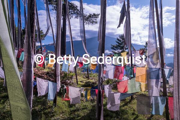 Prayer Flags near Bumthang