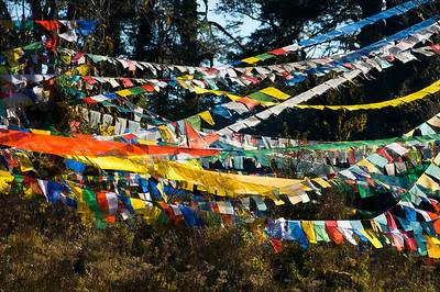 Thimph-Punakha Docula flags-2-DSC_6067