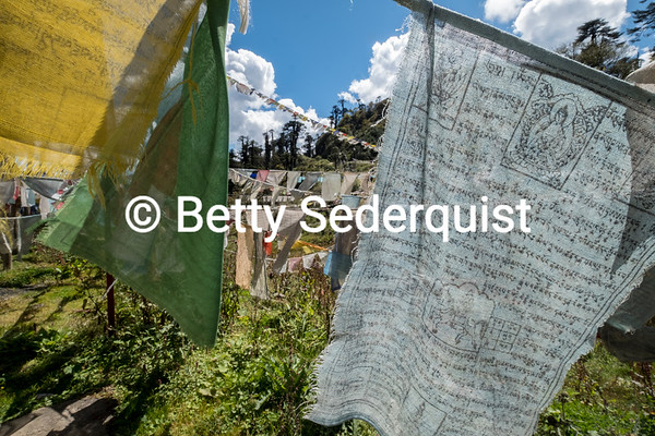 Prayer Flags on Mountain Pass
