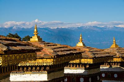 Thimpu-Punakha DoculaLa MtnsDSC_6044