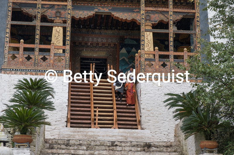 Descending Steep Stairs, Punakha Dzong