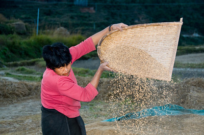 Woman sifting grain_2_DSC_6954