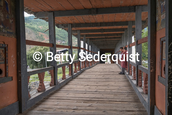 Cantilevered Bridge, Punakha Dzong