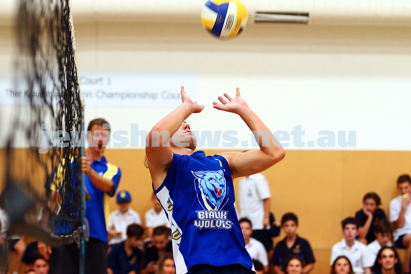 23-3-16. Bialik College Alumni v Year 12 volleyball match. Asher Berlinski, Year 12.. Photo: Peter Haskin