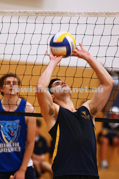 23-3-16. Bialik College Alumni v Year 12 volleyball match. Alumni setter. Photo: Peter Haskin