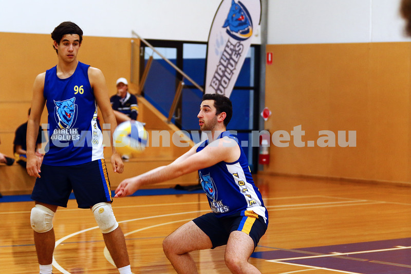 23-3-16. Bialik College Alumni v Year 12 volleyball match. Year 12 digging the ball. Photo: Peter Haskin