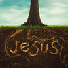 Rooted in Jesus