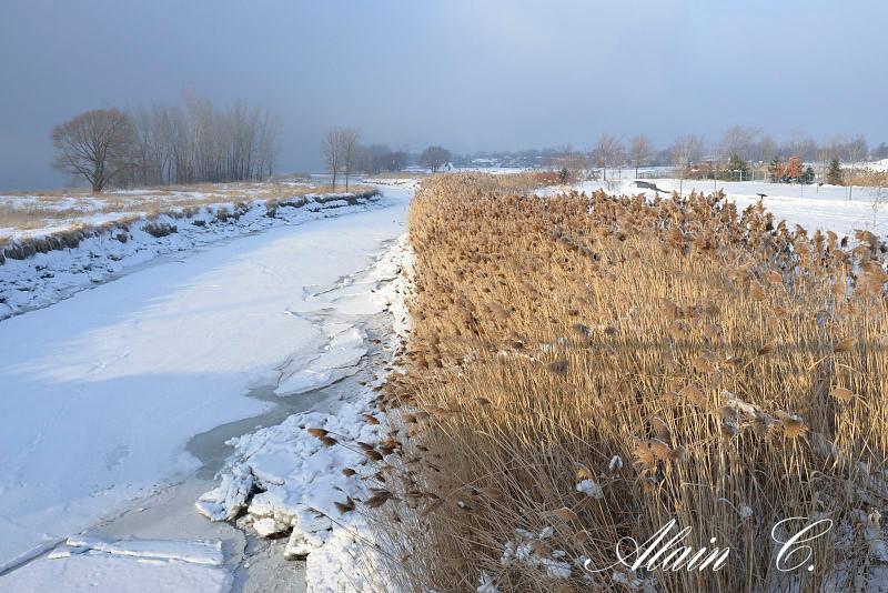 La rivière arrive au fleuve