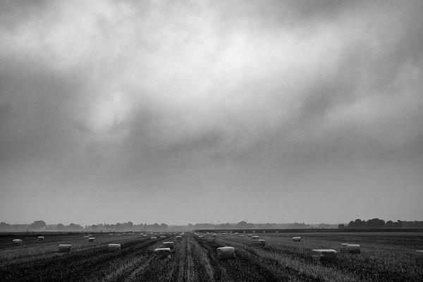 De winter komt eraan | A hazy shade of winter