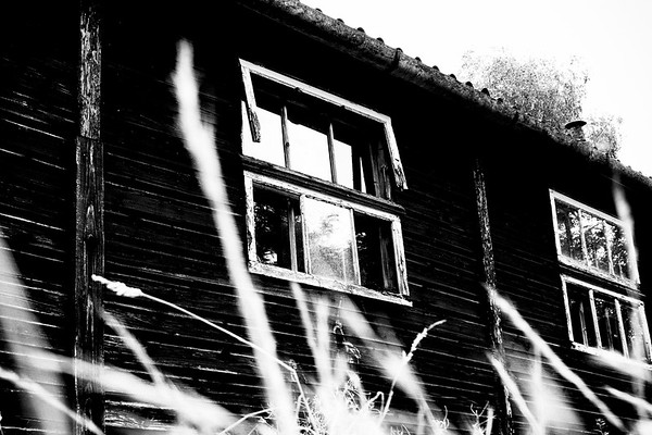 The old shed [#002]