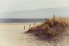 Dune on Texel [#011]