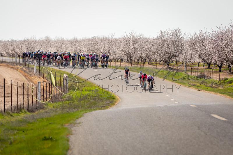2020-02-22 Snelling Road Race
