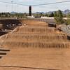 Roadrunner BMX - March 24, 2007