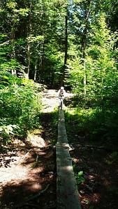 Thom starts across a log bridge.