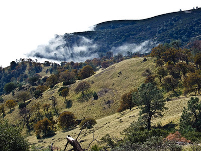 From the summit of Mt. Diablo, the cloud layer below rolls in and out of the draw.