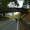 595 Bridge Over