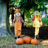 518 Scarecrows