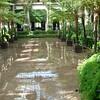 579 Conservatory Pond