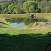 546 Pond Bike