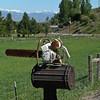 739 Chainsaw Mailbox