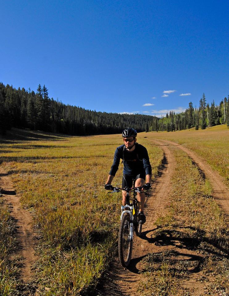 Arizona trail.