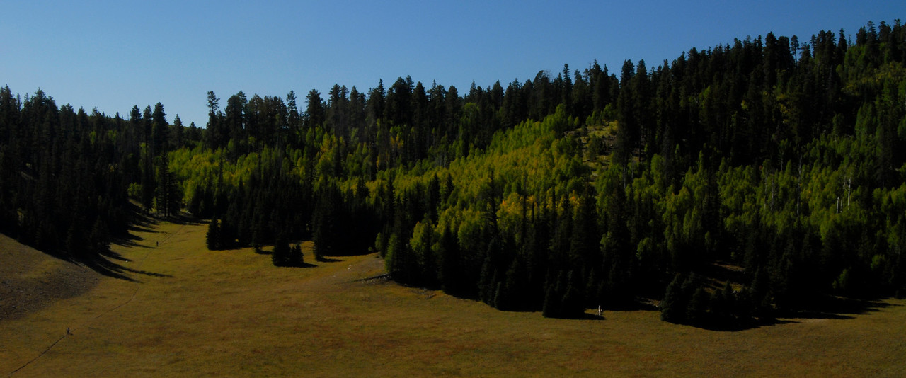 The grand scale of things; the two specks on the left side of the meadow are mountain bikers.