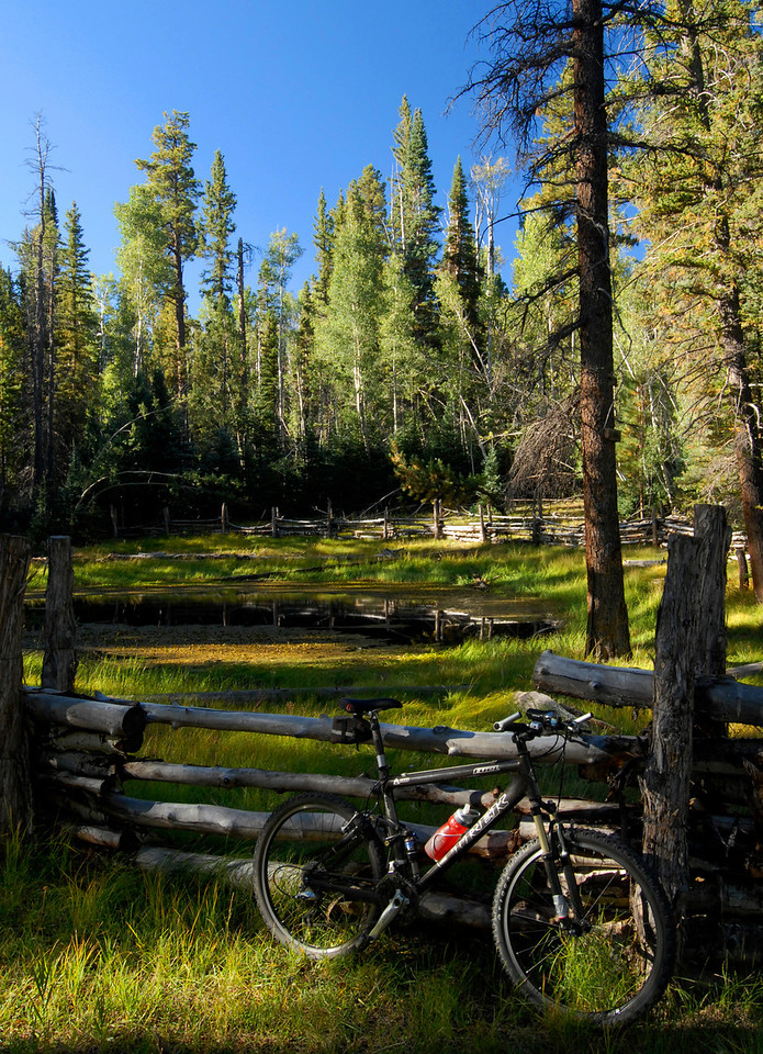 Small pond on the Arizona Trail.