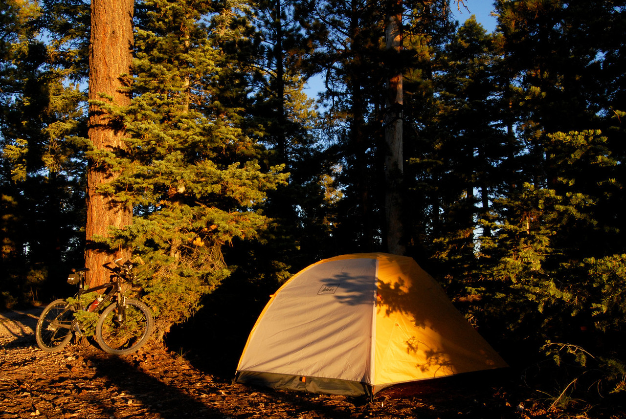 Tent and bike in morning light, East Rim camp.