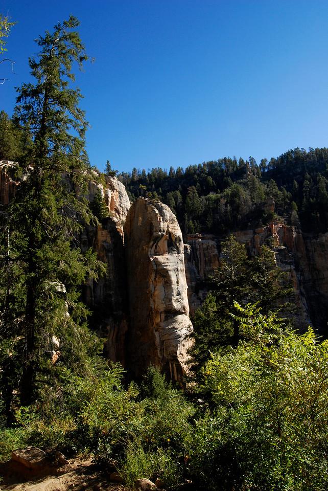 Rock outcrop along the Kaibab.