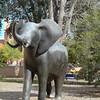 1118 Elephant