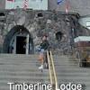 Tiberline