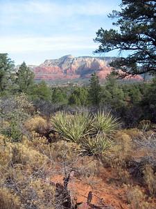 Sedona Arizona '06 08