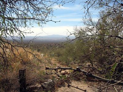 Arizona Desert Camp 07