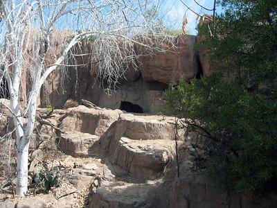 Arizona Desert Camp 03