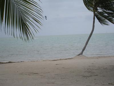 Florida Keys '09 12
