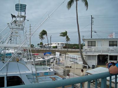 Florida Keys '09 17