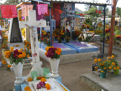 Oaxaca 2008 BAC 91