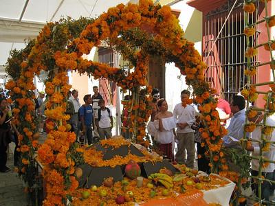Oaxaca 2008 BAC 15