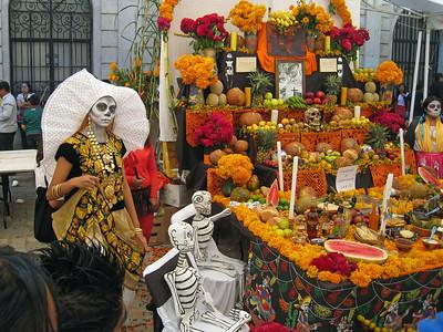 Oaxaca 2008 BAC 17