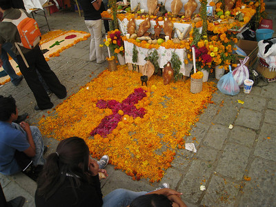 Oaxaca 2008 BAC 14