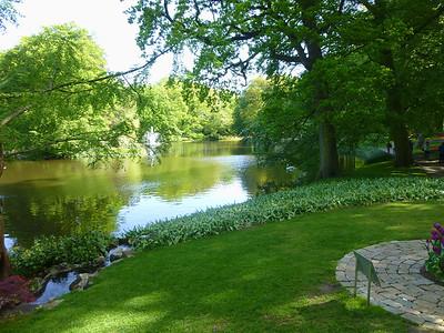 Amsterdam Keukenhof Gardens 2015  17